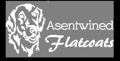 Asentwined Flatcoats Logo